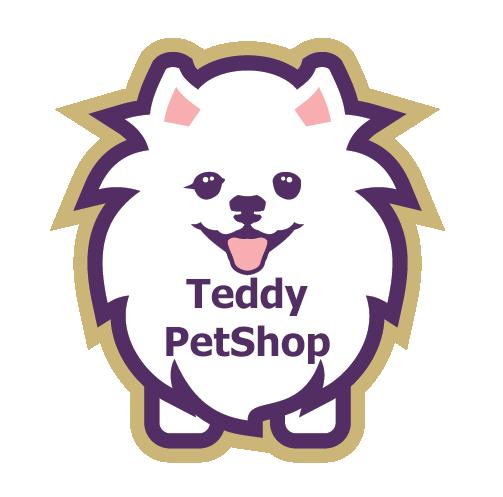 Teddy Logo3 - خانه اصلی